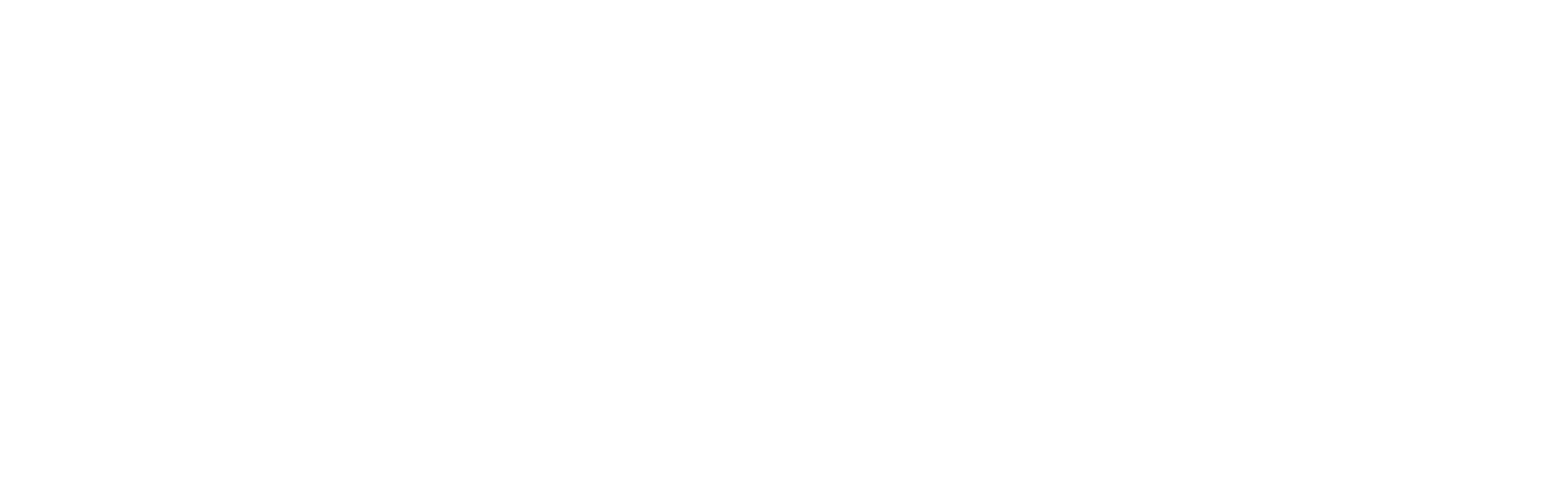 NorthSky Technology Logo